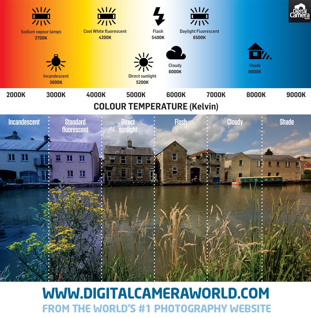 10 mẹo khắc phục sự cố máy ảnh với Lightroom - ảnh 18
