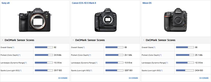 Sony a9 là máy ảnh mirrorless tốt nhất mà DxOMark từng thử nghiệm - ảnh 2