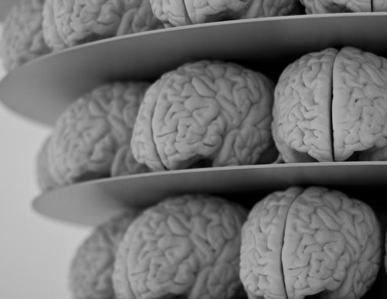 Các nhà khoa học đã có thể đọc được suy nghĩ của con người