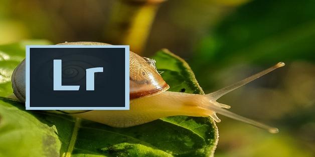 Adobe thừa nhận Lightroom chạy chậm và ì ạch