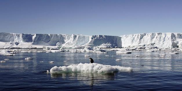 Sẽ ra sao nếu toàn bộ số băng trên Trái đất tan chảy?