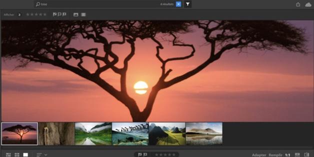 Adobe vô tình rò rỉ ứng dụng chỉnh sửa ảnh mới, sẽ thay thế Lightroom?