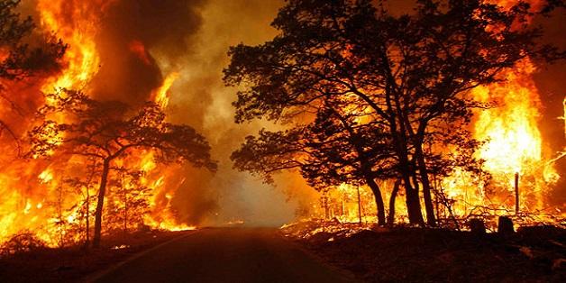 [Ảnh] Những bức ảnh thể hiện rõ nét về vụ cháy lớn suốt mấy ngày qua tại Pháp