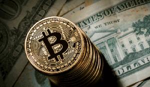 Sập sàn Bitcoin: Dân đầu tư Việt kẻ hoảng loạn, người lạc quan
