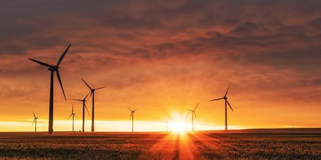 Thế giới có thể tạo ra 100% năng lượng tái tạo vào năm 2050