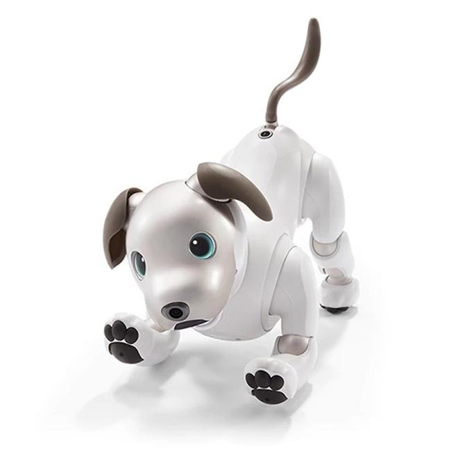 Robot vật nuôi Aibo mới của Sony sẽ được bán ra tại Nhật hôm nay