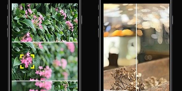 Ứng dụng miễn phí này sẽ mang lại khả năng bokeh chuyên nghiệp hơn cho cụm cam kép trên iPhone