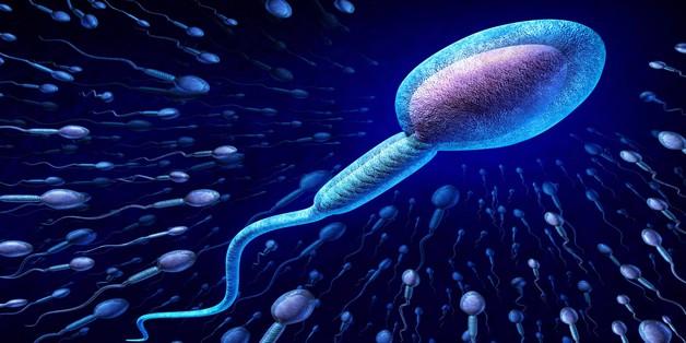 Ô nhiễm không khí làm ảnh hưởng lớn tới chất lượng tinh trùng nam giới?