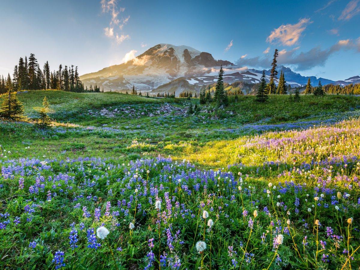 Mù Cang Chải lọt top những ngọn núi đẹp nhất thế giới - ảnh 7