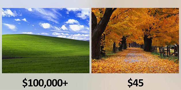 Cùng là hình nền của Windows XP, nhưng một bức được trả 100.000 USD trong khi bức còn lại chỉ có... 45 USD