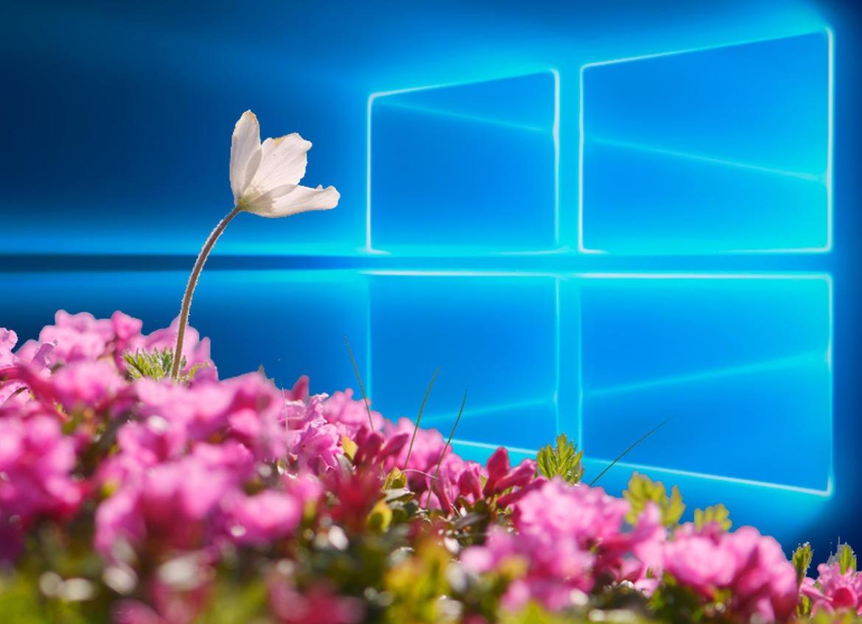 Windows 10 Spring Creators Update sẽ được tung ra trễ hơn dự kiến