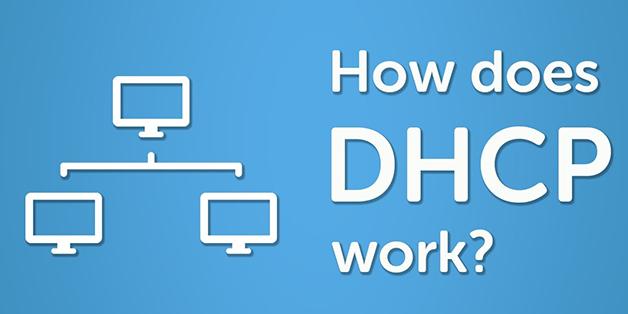 DHCP là gì? Nó hoạt động như thế nào?