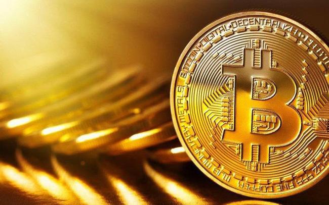 Xử phạt Bitcoin Việt Nam 40 triệu đồng, tịch thu tên miền