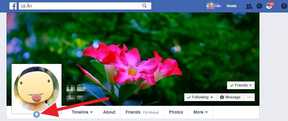 Bảo Vệ Ảnh Đại Diện (Profile Picture Guard) Là Tính Năng Bảo Mật Được  Facebook Triển Khai Cho Những Người Dùng Ở Ấn Độ Nhằm Ngăn Chặn Tình Trạng  Lạm Dụng ...