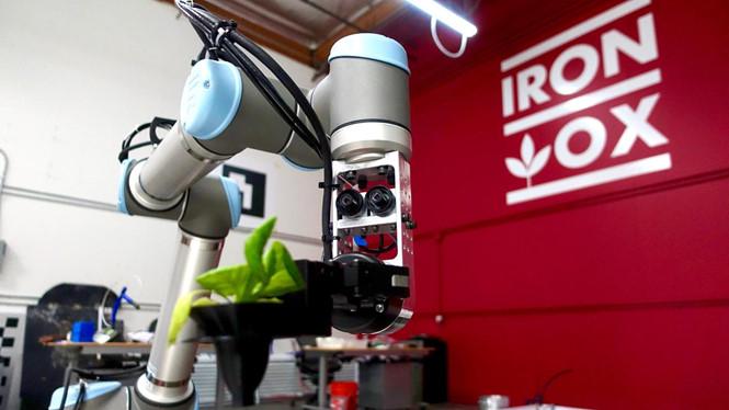 Nông trại do robot quản lý 100% đầu tiên tại Mỹ