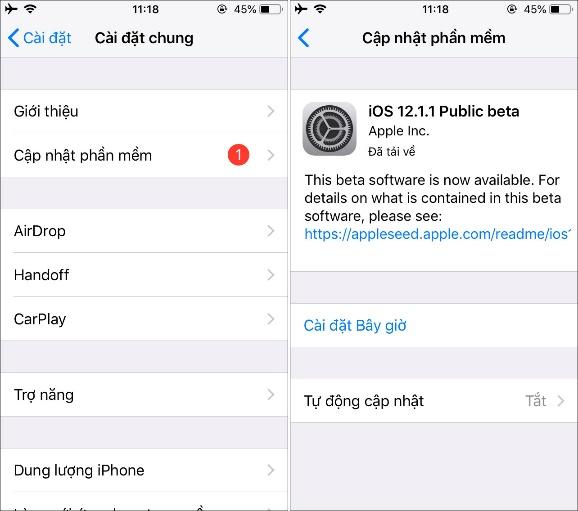 14 mẹo xử lý lỗi cơ bản mọi người dùng iPhone cần biết - ảnh 3