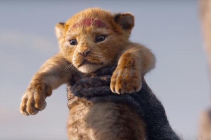 Trailer đầu tiên của live-action Vua Sư Tử: tuổi thơ đây rồi!