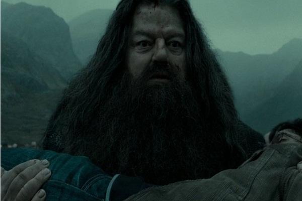 Những điều bạn chỉ nhận ra ở Harry Potter khi trưởng thành (Phần 1)
