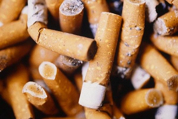 Không phải túi nilon, đầu lọc thuốc lá mới là thứ gây ô nhiễm nhất và không thể ngăn ung thư