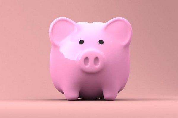 15 điều bất ngờ ít ai biết về lợn, con giáp biểu trưng cho sự thịnh vượng và sung túc