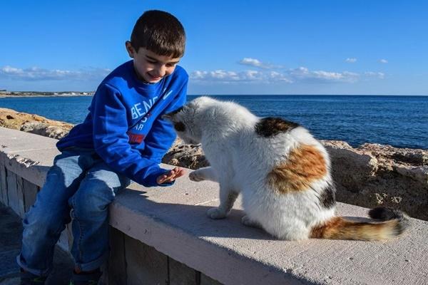 Tại sao bạn nên nuôi thú cưng?