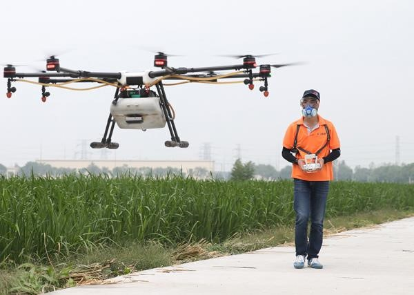 Lái drone rải thuốc trừ sâu - nghề hot nhất ở nông thôn Trung Quốc