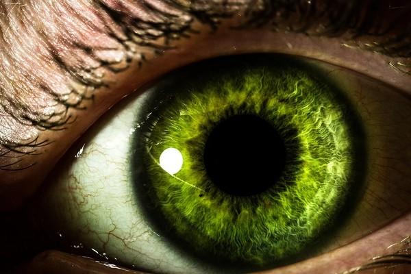 Ngất ngây với loạt ảnh phơi sáng kép kết hợp giữa thiên nhiên và đôi mắt