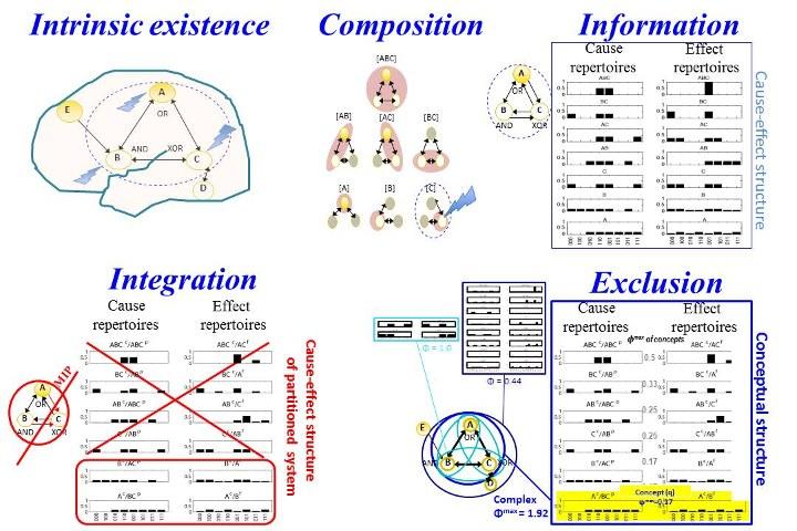 Đã có cách chứng minh: Ý thức là một dạng vật chất đo lường được