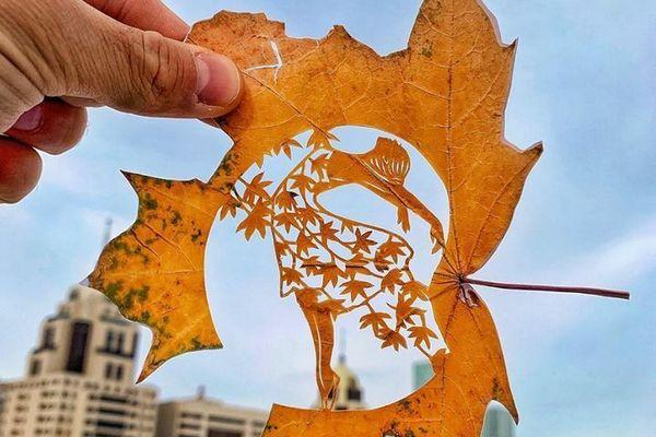 Chiêm ngưỡng loạt tác phẩm điêu khắc tinh xảo được thể hiện trên những chiếc lá cây mỏng manh