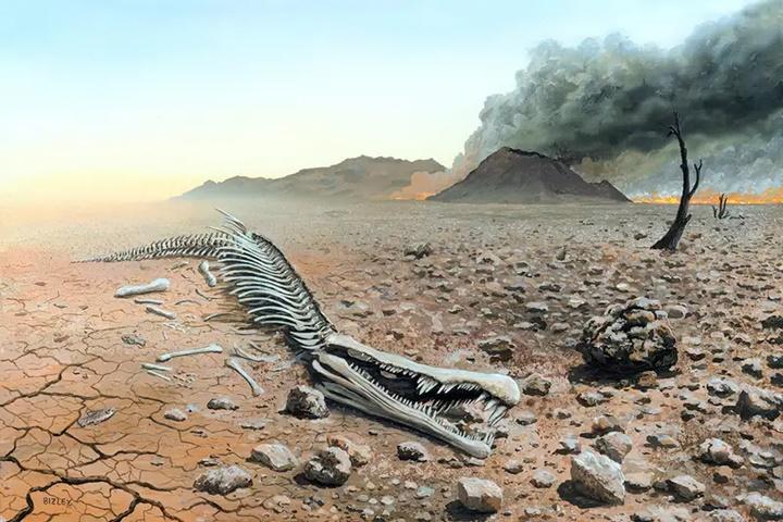 Sự hủy diệt sinh học: 1 triệu loài phải đối mặt với sự tuyệt chủng trong nhiều thập kỷ