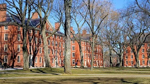 Lý do nào khiến Đại học Harvard danh tiếng bị coi là nỗi xấu hổ của giáo dục đại học Mỹ