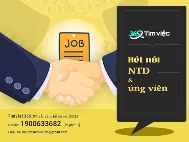 Tìm việc làm nhanh chóng và uy tín ngay tại Timviec365.vn