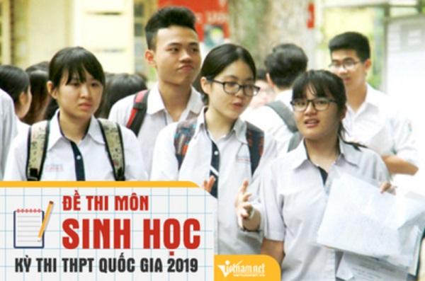 Đáp án tham khảo môn Sinh học thi THPT quốc gia 2019