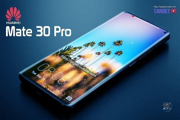 Hình ảnh về film bảo vệ của Huawei Mate 30, Mate 30 Pro và những chi tiết được gợi mở