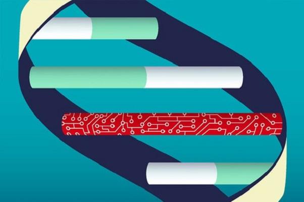 Lưu trữ dữ liệu bằng DNA đang gần hơn bạn tưởng rồi đấy!