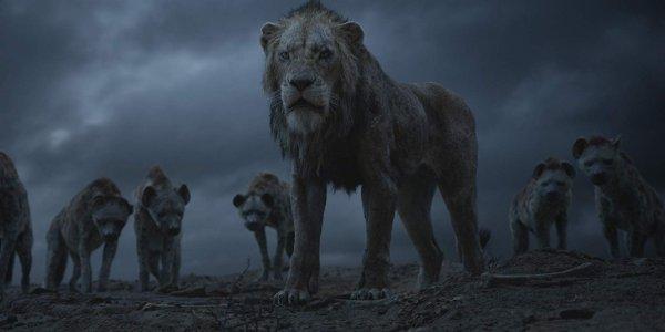 """""""The Lion King"""" 2019 có nguy cơ bị đánh giá """"dở"""" trên Rotten Tomatoes"""