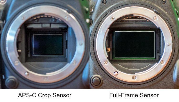 Máy ảnh DSLR là gì? Và nó khác mirrorless như thế nào?