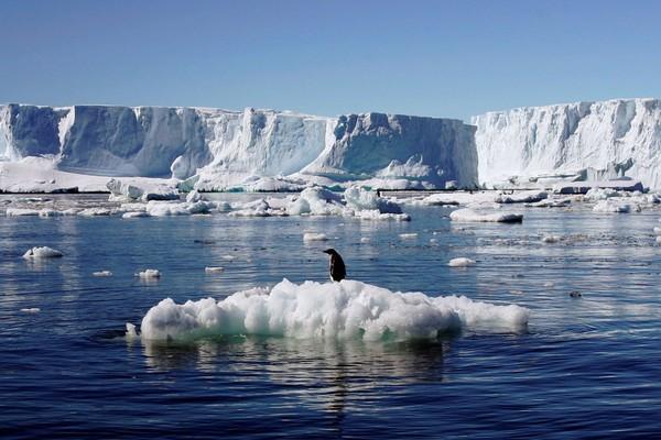 Băng ở Greenland đang tan chảy với tốc độ không tưởng, đe dọa xóa sổ nhiều thành phố ven biển