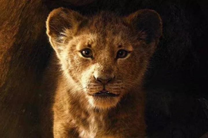 Live-action Lion King chính thức là bộ phim có doanh thu cao thứ 9 trong lịch sử điện ảnh