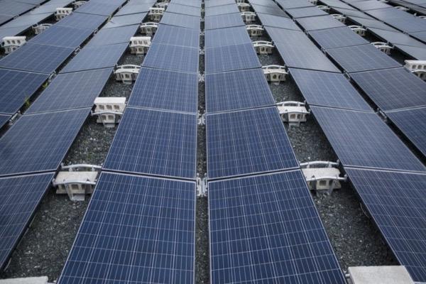 Tesla bị kiện do pin mặt trời gắn tại siêu thị bắt lửa