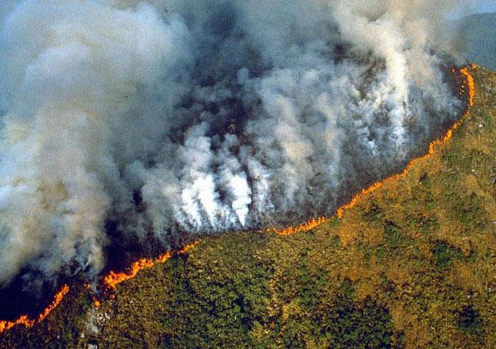 Cháy rừng Âmazon