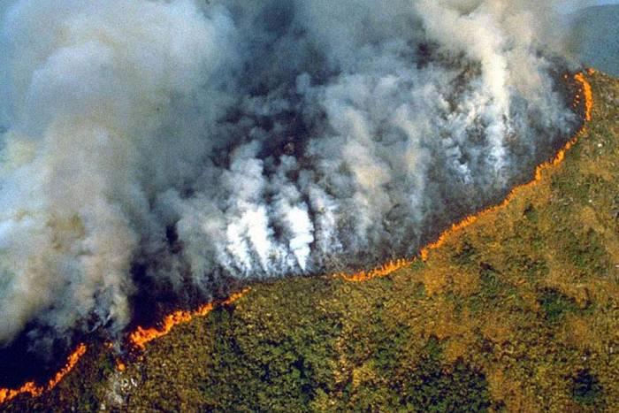 Vì sao cháy rừng Amazon lan rộng suốt 3 tuần qua và rất khó dập tắt?