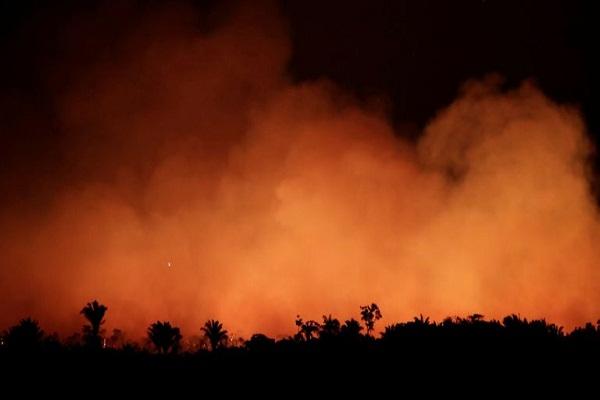 Tại sao rừng Amazon ẩm ướt nhất thế giới lại cháy dữ dội như vậy? Con người, con người và con người
