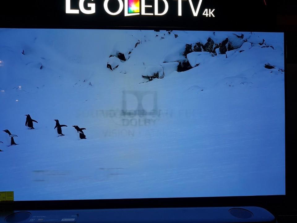 LG bị phạt 2,5 tỷ đồng ở Úc vì từ chối bảo hành TV OLED bị burn-in