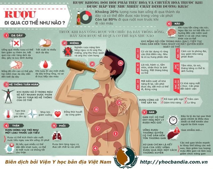 Thuốc giải rượu có hại gan hay không?