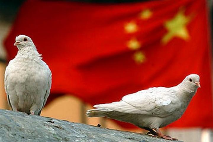 Đến cả bồ câu cũng bị cấm bay trong ngày kỷ niệm 70 năm thành lập nước Cộng hòa Nhân dân Trung Hoa