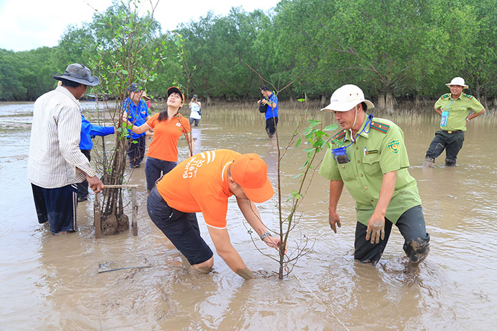 FPT Software trồng 2.000 cây bần tại rừng ngập mặn Sóc Trăng