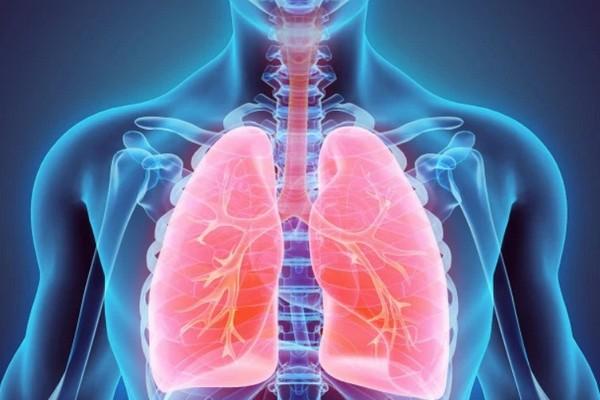 Nghiên cứu: Chất béo có thể tích tụ trong phổi và là nguyên nhân gây ra hen suyễn?