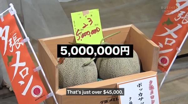 Tại sao những quả này có giá hơn 500 triệu đồng/ quả?