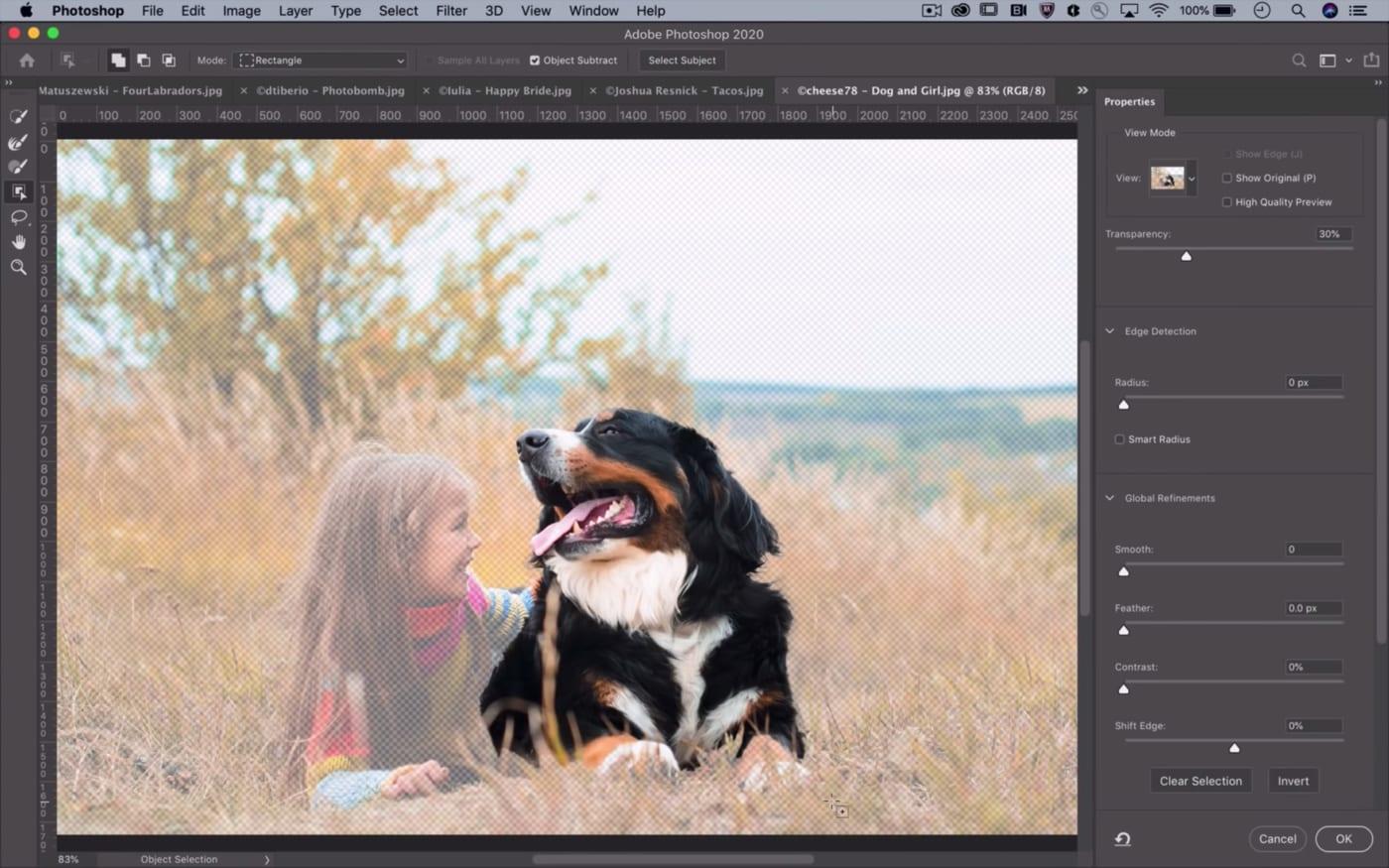 AI mới của Photoshop giúp tự động tạo vùng chọn của vật thể trong ảnh với độ chính xác cực cao